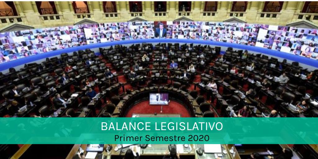 BALANCE LEGISLATIVO 2020: Un primer semestre con poca actividad, relegada por la pandemia